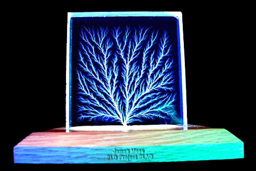 """Tree of Fire"" Lichtenberg figures. Beam trees are highly prized at SLAC and often given as awards."